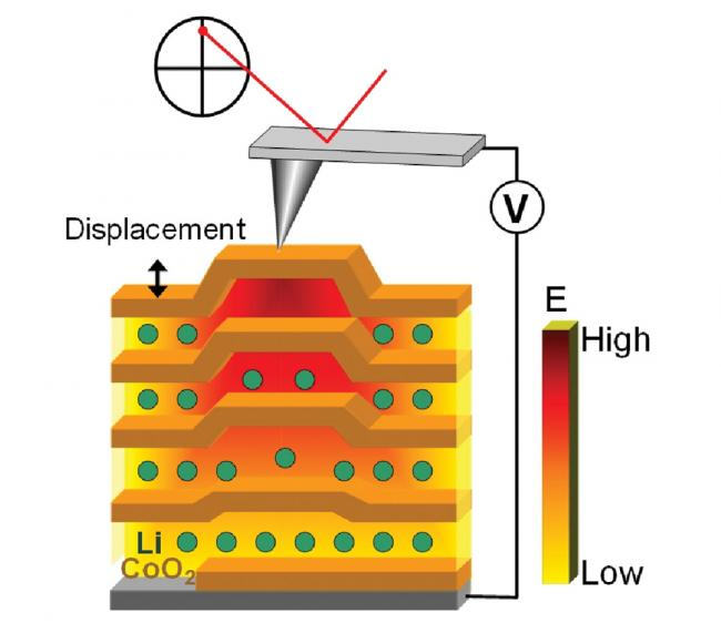 Electrochemical Strain Microscopy diagram